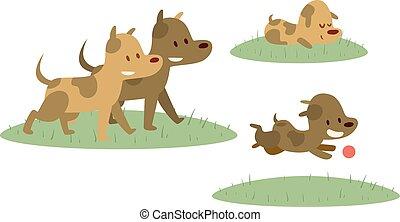 zdařilý rodinný, chůze, s, pes, do, mladický snímek