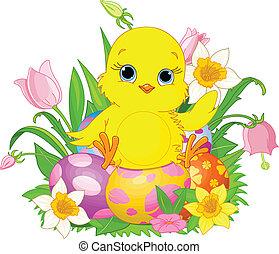 zdařilý velikonoční, kuřátko