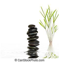 zdrój, kamienie, i, bambus, liść, trawa