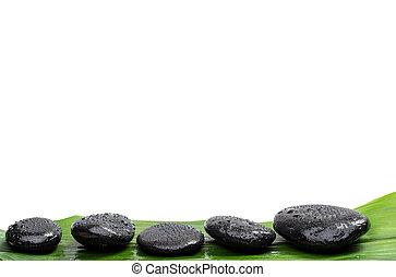zdrój, kamienie, na, zielony liść, odizolowany, tło