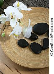 zdrój, masaż, kamienie, i, orchidee
