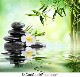 zdrój, masaż, traktowanie, w, ogród