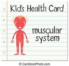 zdraví, karta, svalnatý systém