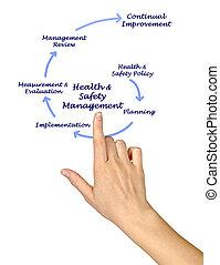 zdrowie, &, bezpieczeństwo, kierownictwo