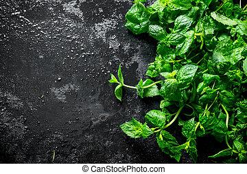 zdrowy, pachnący, mint., jadło., świeży
