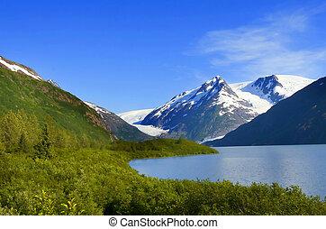 zdumiewający, alaska