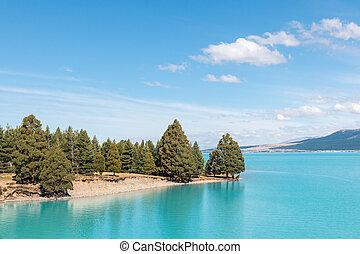 zealand, 岛, 树, pukaki, 湖, 松树森林, 新, 南方