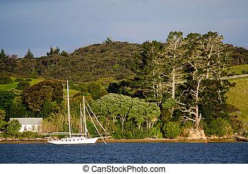 Zealand, 帆, 湾, 島, 新しい, ボート