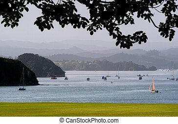 Zealand, 新しい, 島, 湾