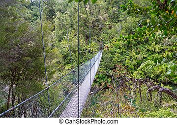 zealand, bridzs, nemzeti park, tasman, odaköt, dzsungel, új, abel