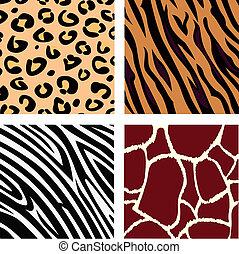 zebra, żyrafa, lampart, tiger, skóra