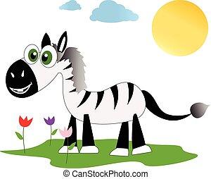 zebra, επάνω , ένα , όμορφος , λιβάδι