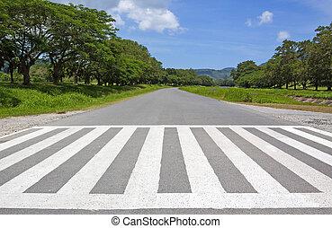zebra, κυκλοφορία , δρόμος , σταυρός , ουρανόχρους , δρόμος , βόλτα