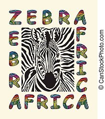 Zebra - Africa background