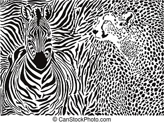 Zebra and cheetah and pattern backg
