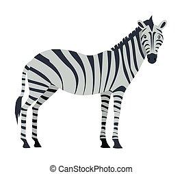 Zebra Cartoon Isoated. African Equids Horse
