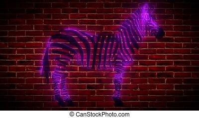 zebra digital laser animation video