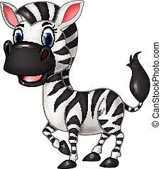 zebra, divertente, proposta, cartone animato, isolato