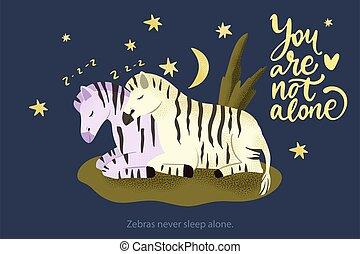 zebra, ensemble., couple, dormir, cheval