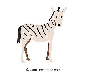 Zebra. Flat vector illustration. Isolated on white background.