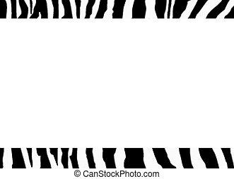 zebra, gabarit