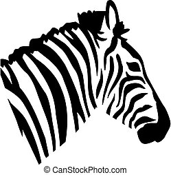 Zebra head portrait