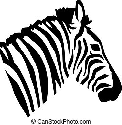 Zebra head view from side