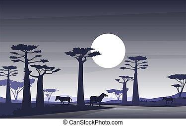 Zebra Horse in Baobab Tree Savanna Landscape Africa Wildlife Illustration