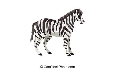 Zebra icon animation best on white background for any design