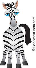 zebra, illustrazione
