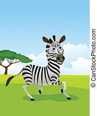 zebra, karikatur, in, der, tierwelt