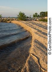 Zebra Mussel Shell Shore Waves