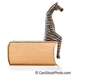 zebra on book