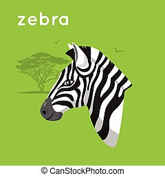 Zebra on green backdrop. - Cartoon simple illustration....