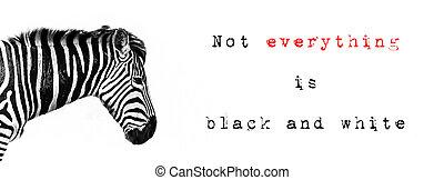 Zebra quotation banner