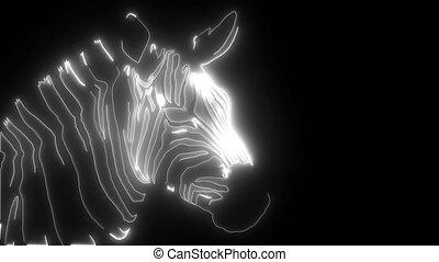 zebra, tête, animation, numérique