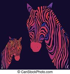 zebra., vektor, illustration.