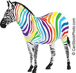 zebra., verschieden, streifen, colors.