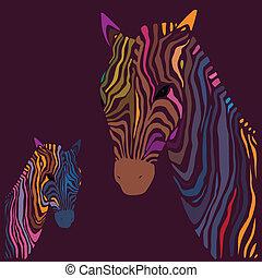 zebra., vetorial, illustration.