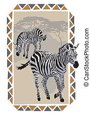 Zebras on Savannah