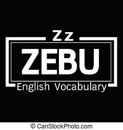 ZEBU english word vocabulary illustration design