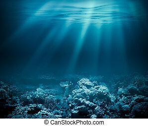 zee, diep, of, oceaan, onderwater, met, koraalrif, als, een,...