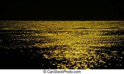 zee, op, night.
