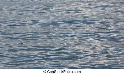 zee water, oppervlakte