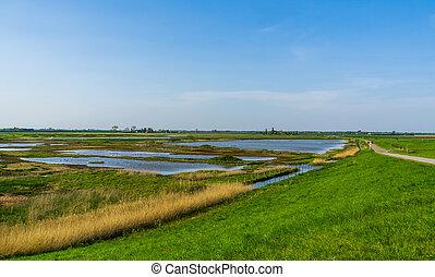zeeland, mooi, natuur, nederland, schakerloopolder,...