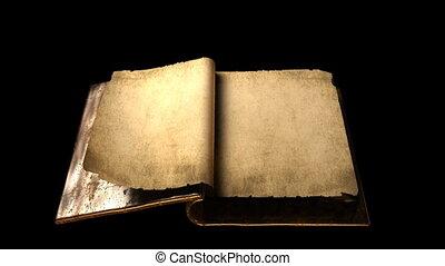 zeer, oud, goud, magisch, boek, met, flipp