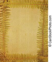 zeer, oud, yellowed, beeld, van, papier, ingelijst, met, varen, grens