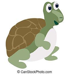 zeichnung, fröhlich, wasserschildkröte