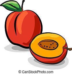 zeichnung, früchte, vektor, skizze, pfirsich