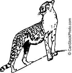 zeichnung, leopard, auf, hintergrund., silhouette, weißes